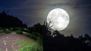 Full Moon and Labyrinth Walk